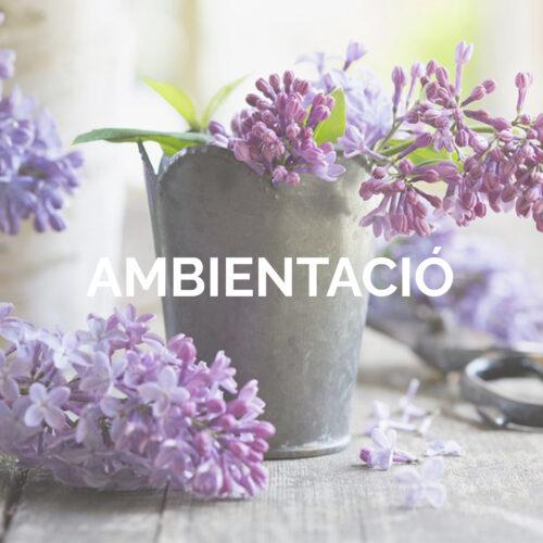 AMBIENTACIO